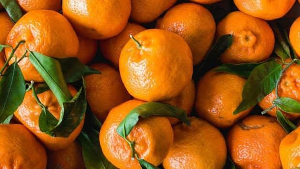 orange updatenews360