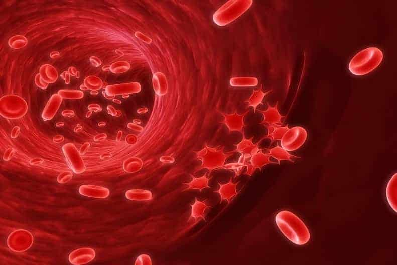 how to increase the blood count naturally