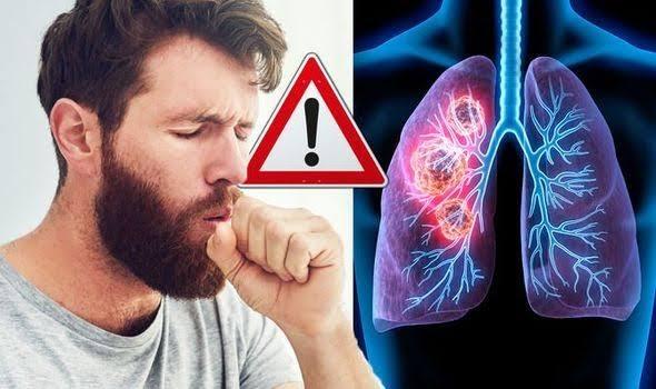 Lungs Liver- Updatenews360