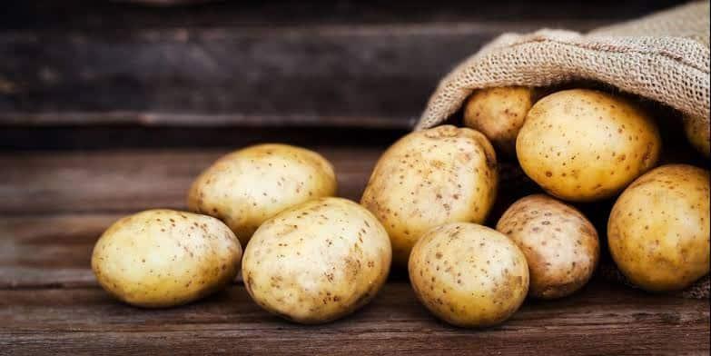 Potato - Updatenews360