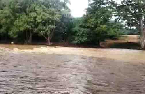 Sathy Flood - Updatenews360