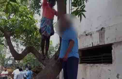 Villupuram Suicide - Updatenews360