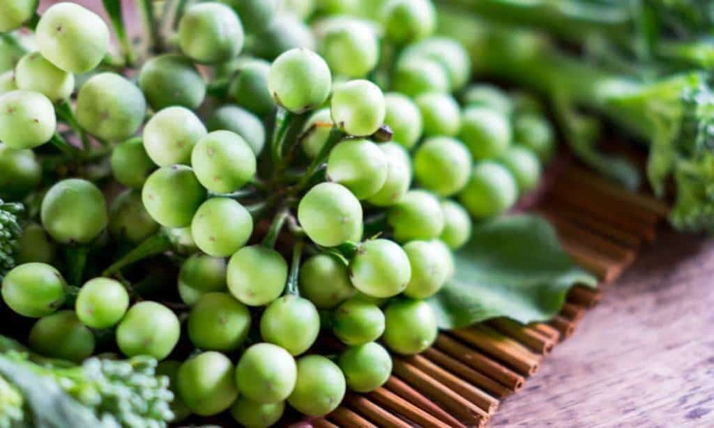 health-benefits-of-sundaikai