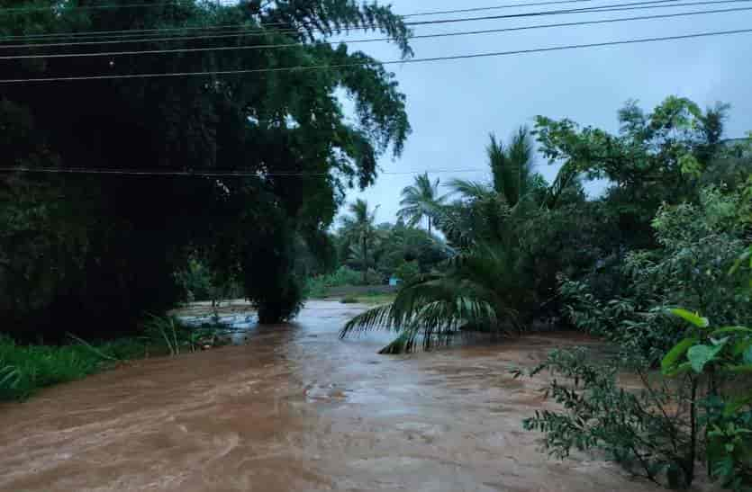 nilgiri rain - updatenews360