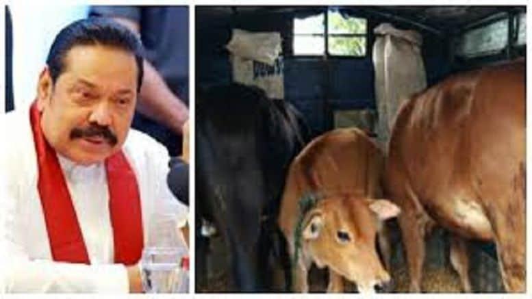Rajapaksa - updatenews360
