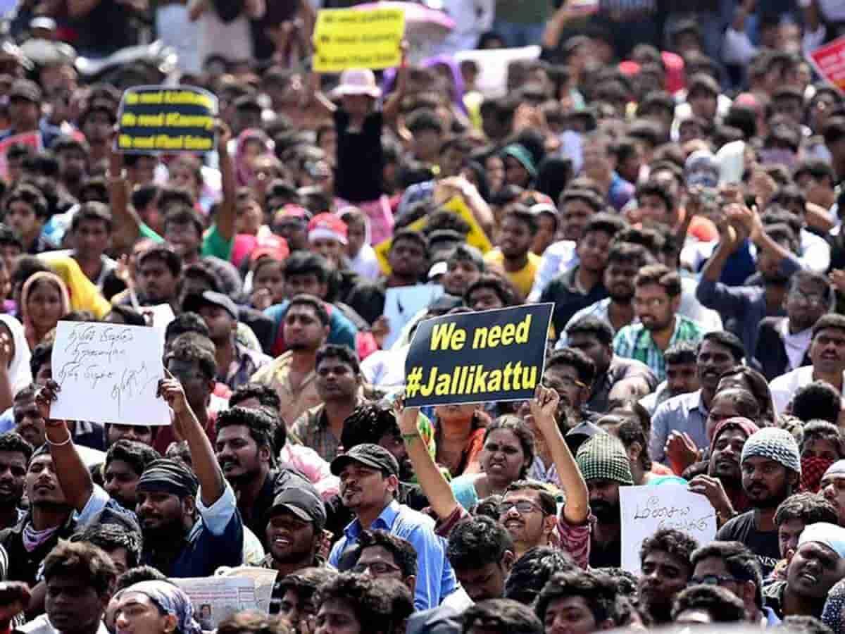 jallikattu protest 210920