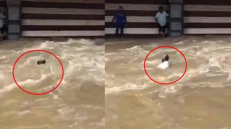 Flood Man struck- Updatenews360