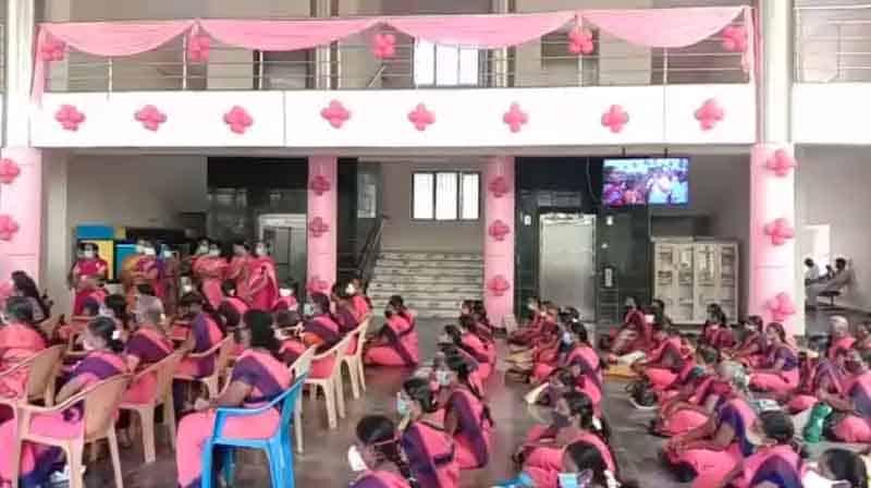 Pink Color - Updatenews360