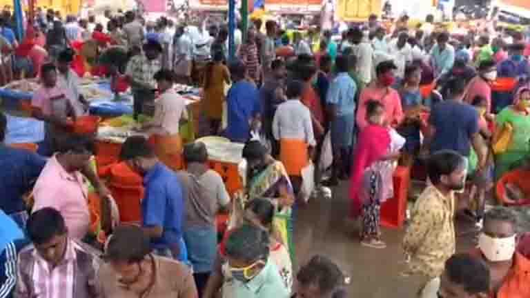 Tirupur Fish Market - Updatenews360