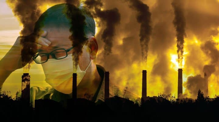 6 Foods That Can Protect You from the Harmful Effects of Pollution
