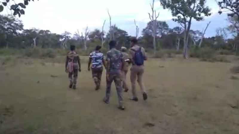 Ooty Animal Census -Updatenews360