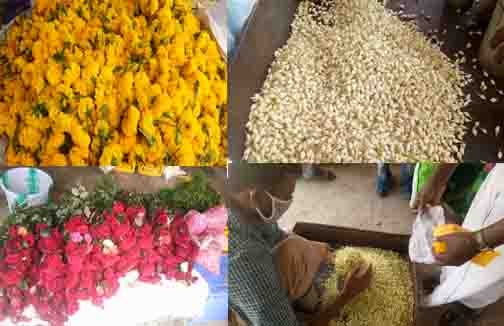 Sathy Flowers Onam- Updatenews360