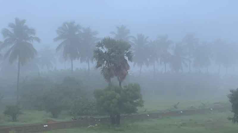 Tirupur Fog - Updatenews360