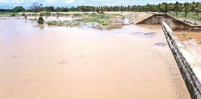 pazhani lake damage - updatenews360