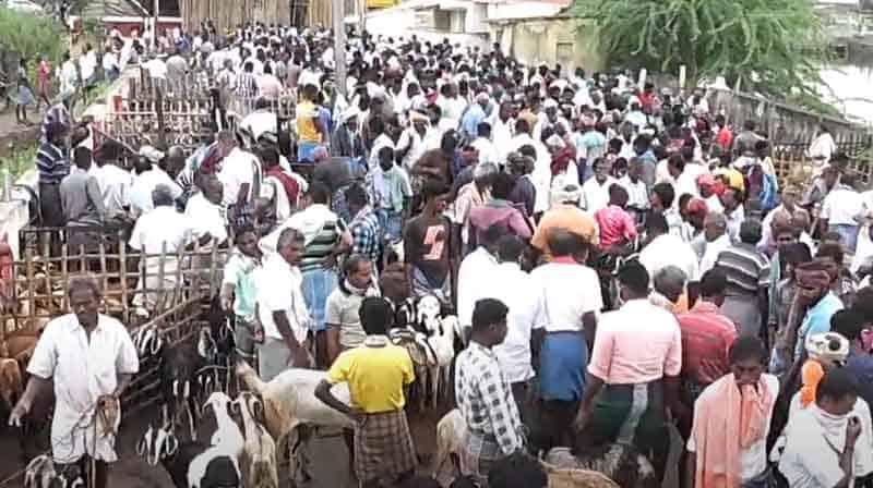 ettayapuram Goat Market - Updatenews360