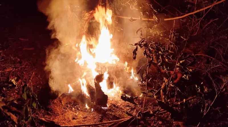 Burned Deady body- Updatenews360