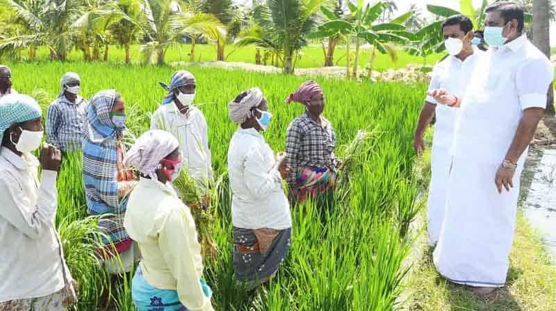 CM Farmer- Updatenews360