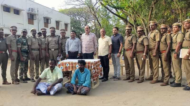 Elephant Trunk Arrest - Updatenews360