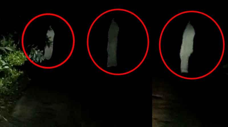 Ghost Video - Updatenews360
