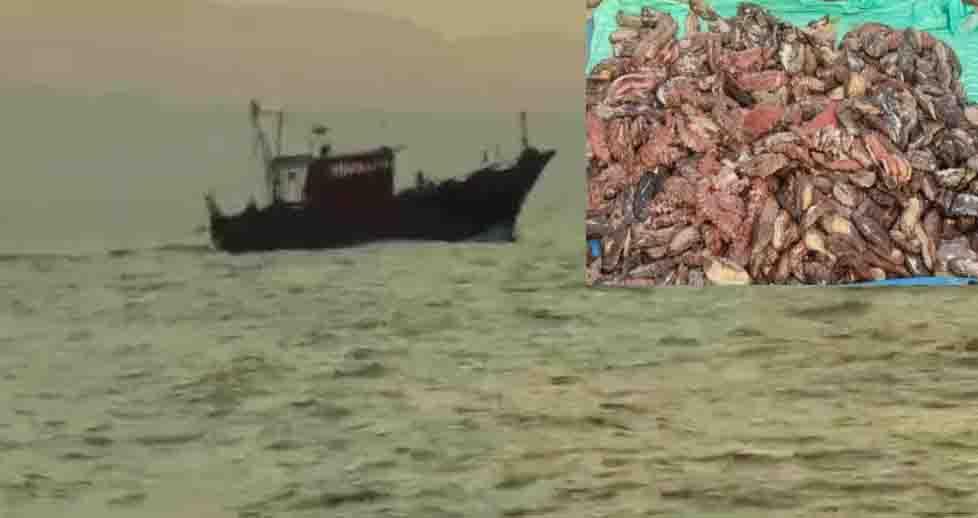 Kumari Fishers Arrest - Updatenews360