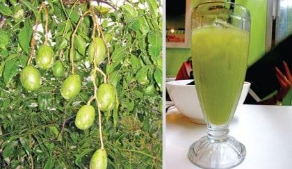 ambarella fruit benefits