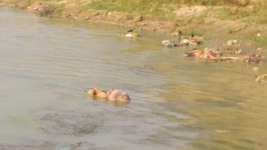 Ganga_Dead_Bodies_UpdateNews360