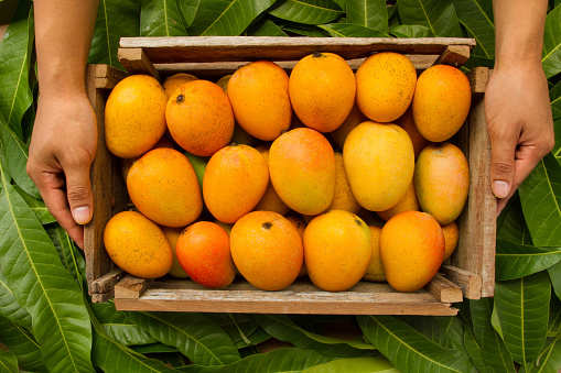foods to avoid after eating mango