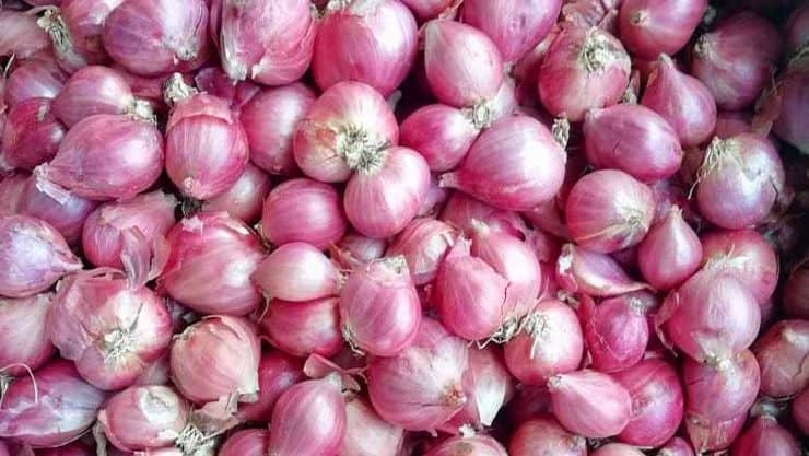 health benefits of small onion in tamil