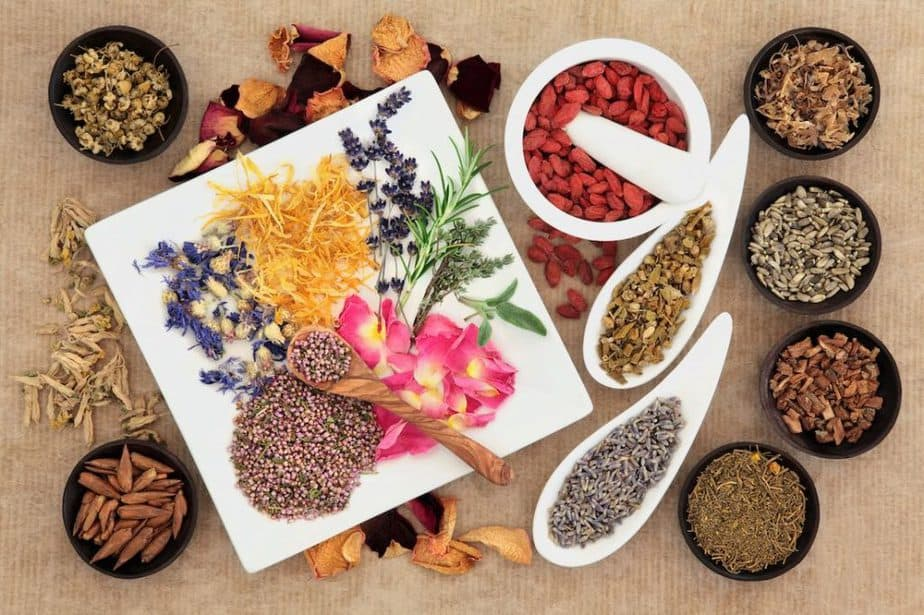 What is phytotherapy; know everything about its healthy side