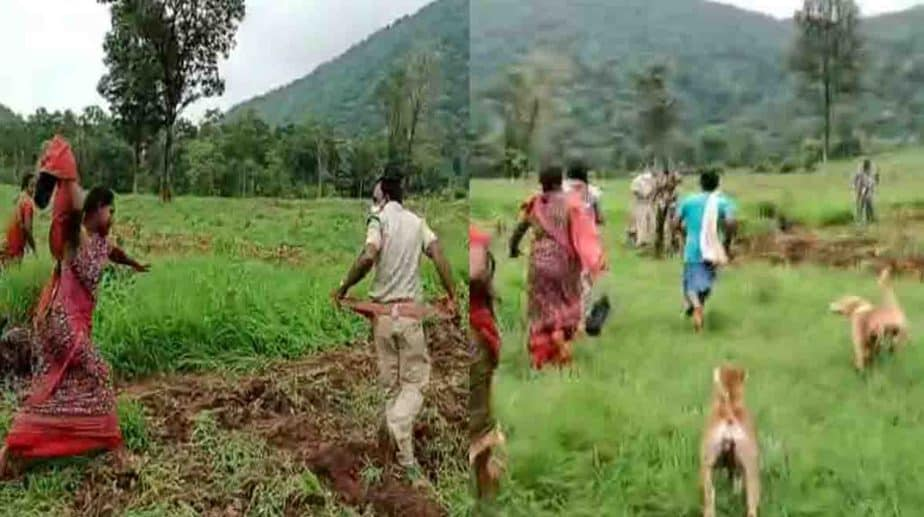 Womens Beat Forest Officer - Updatenews360