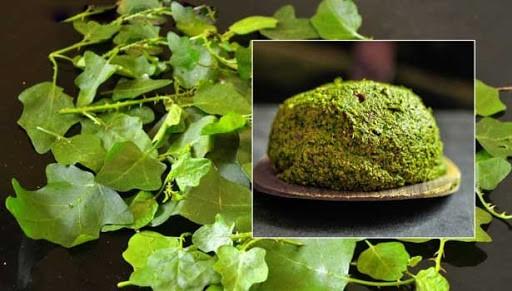 medicinal uses of thoothuvalai plant